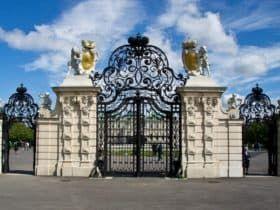 Шиарные кованые ворота